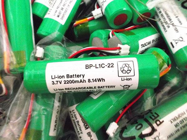 p_BP-L1C-22